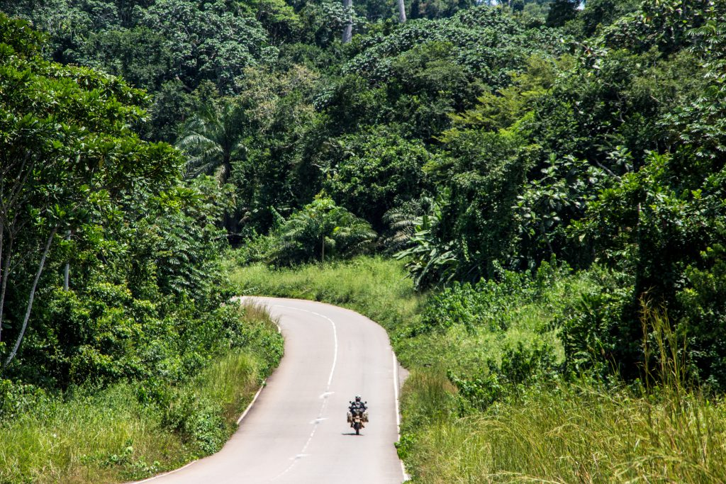 Twisties through the forest in Gabon