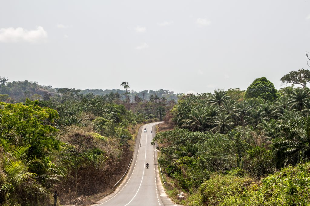 Riding into Cameroon: nothing but green