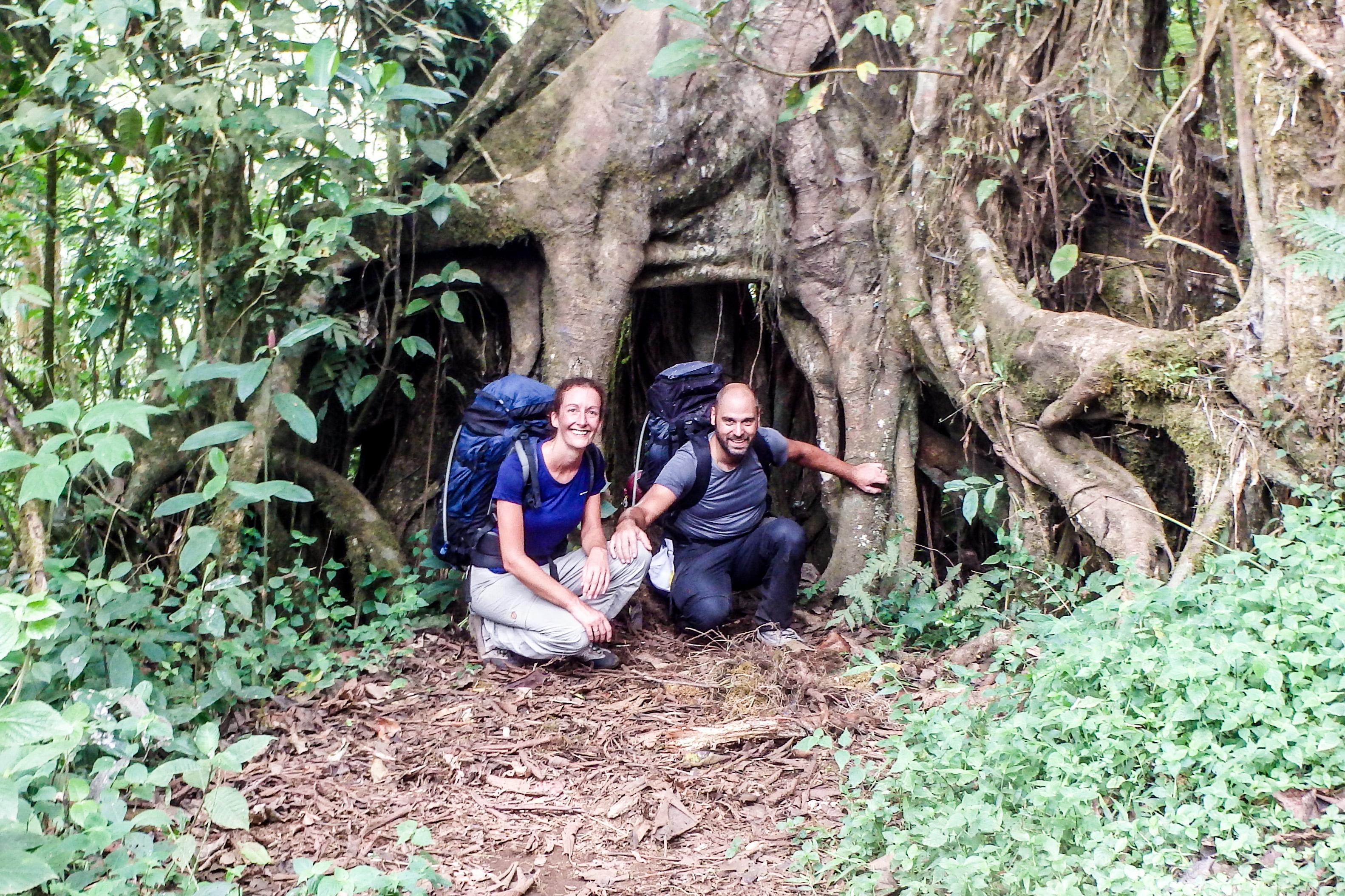 site de rencontre au cameroun sans inscription forest